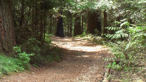 Arrowhead-Trailhead