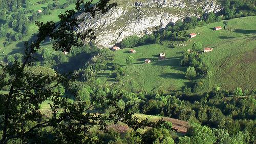 green-pasture