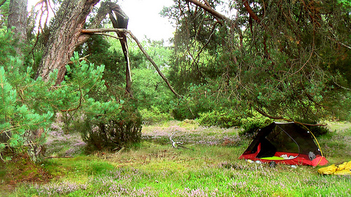 tent-Cairngorms