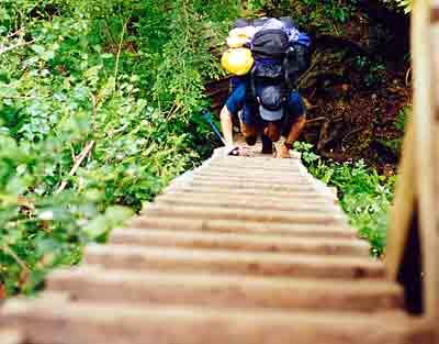 ladder_top
