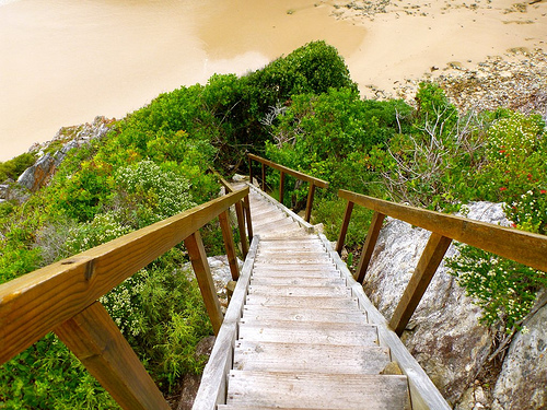 stairs to Bloukrans