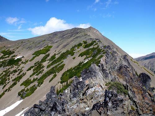 ridge scramble