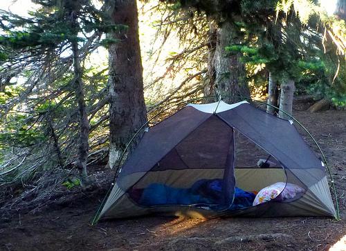 tent Deer Park