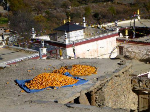 Marpha roof