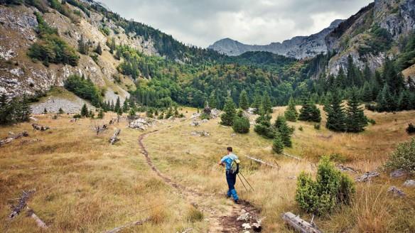 trail-vic-dinarica_fe