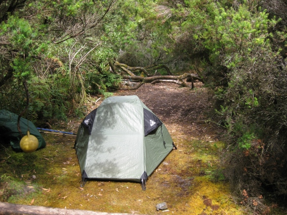 Louisa Bay campsite