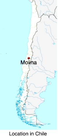 Molina map