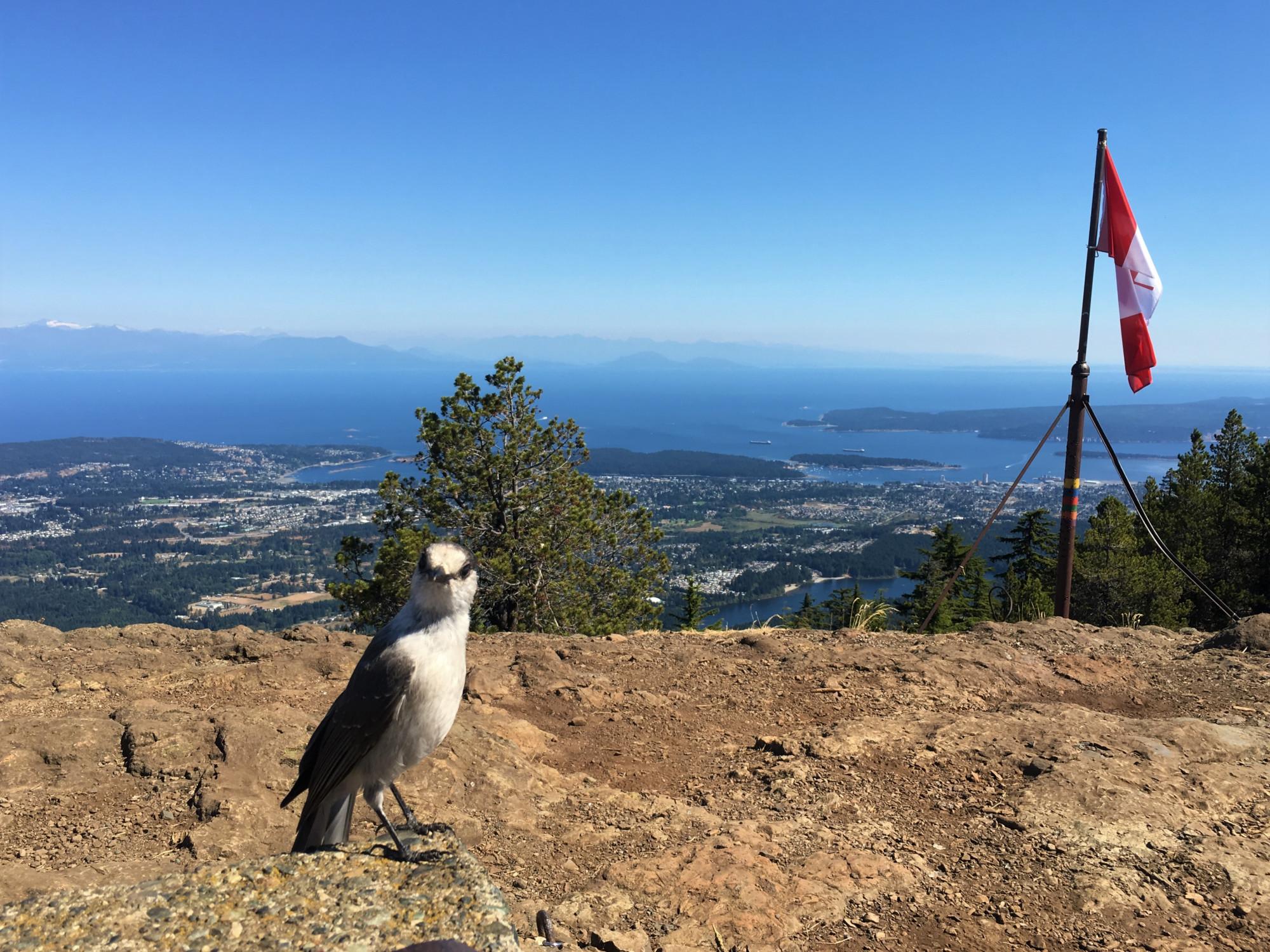 Witchcraft Lake to Mt Benson, Nanaimo 3