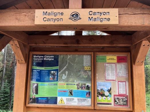 Maligne Canyon, Jasper, Alberta 86