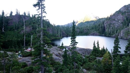 Cream Lake trail, Strathcona Park B.C. 6