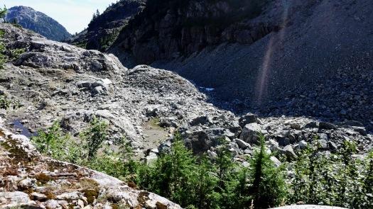 Cream Lake trail, Strathcona Park B.C. 14