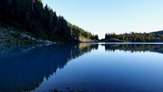 Cream Lake trail, Strathcona Park B.C. 22