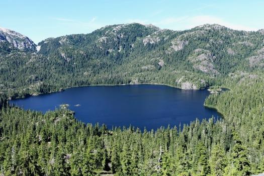 Cream Lake trail, Strathcona Park B.C. 9