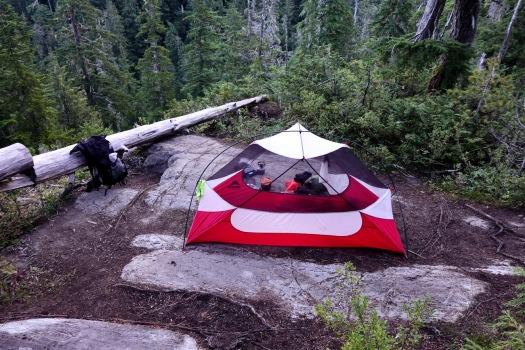 Cream Lake trail, Strathcona Park B.C. 5