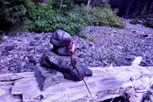 hiking Elk Pass, Strathcona Park B.C. 34