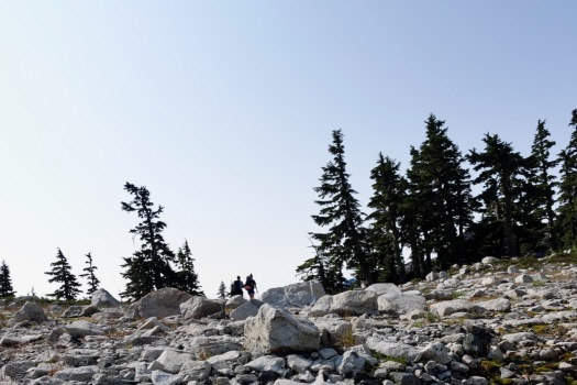 hiking Elk Pass, Strathcona Park B.C. 48