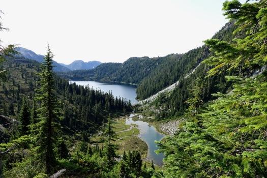 hiking Elk Pass, Strathcona Park B.C. 49