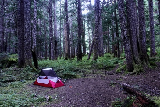hiking Elk Pass, Strathcona Park B.C. 54