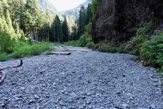 hiking Elk Pass, Strathcona Park B.C. 38