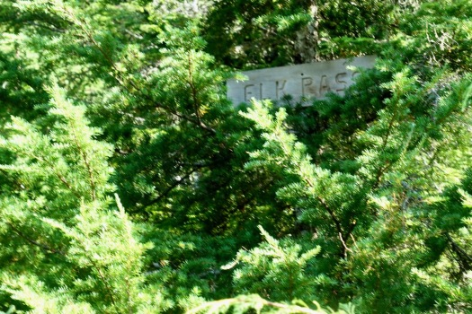 hiking Elk Pass, Strathcona Park B.C. 33