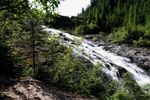 Elk River trail to Landslide Lake, Strathcona Park B.C. 73