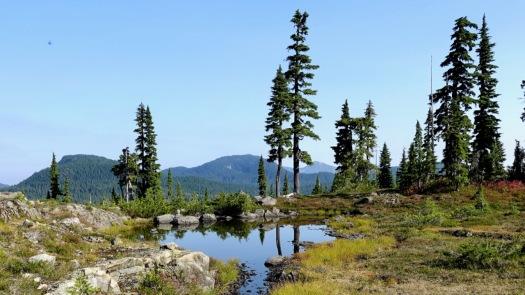 Hiking Castlecrag, Vancouver Island 13