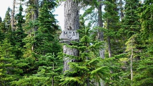 Hiking Castlecrag, Vancouver Island 4
