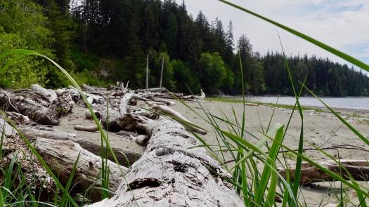 West Coast Trail 2021 21