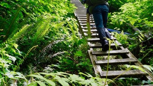 West Coast Trail 2021 23